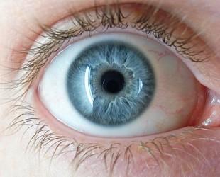 Причины черных мушек перед глазами и лечение, признак чего, плавающие и летают постоянно